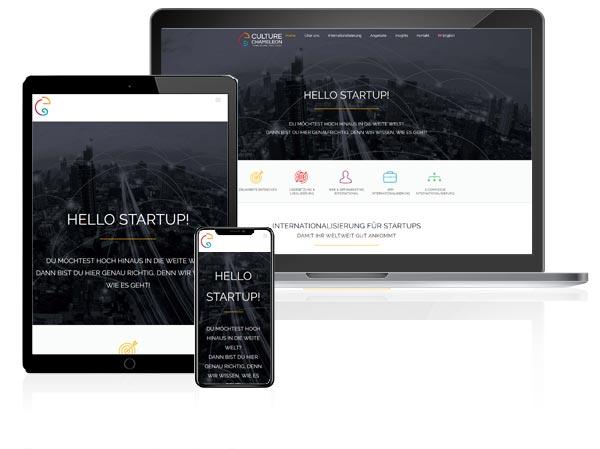 Webdesign Referenz Culture Cameleon