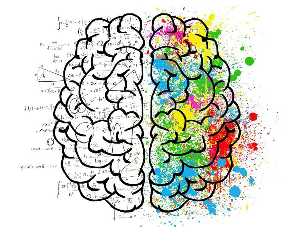Ein symbolhaftes Bild eines Gehirns für die Schreibansätze, die sich Chaos und Struktur nennen