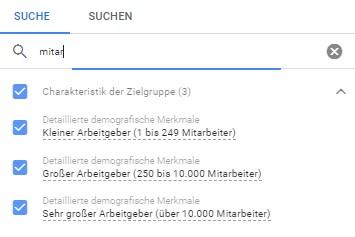 Ein Screenshot der Einstellungen der Charakteristik der Zielgruppe bei Google Ads B2B Kampagnen