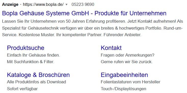 Screenshot eines Auszugs einer Google Ads Anzeige in den SERPs